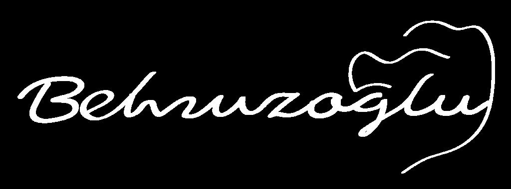 Behruzoglu_logo_white